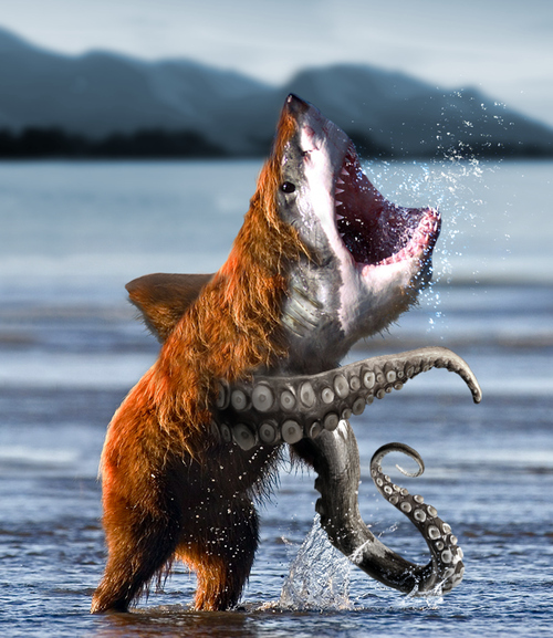 Bearsharktopus! Bear + Shark + Octopus!