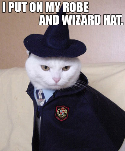Trollcat: I put on my robe and wizard hat