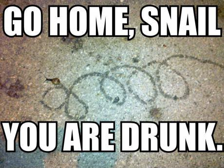 Go home, snail. You are drunk.